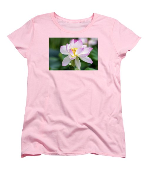 Women's T-Shirt (Standard Cut) featuring the photograph Lotus by Edward Kreis