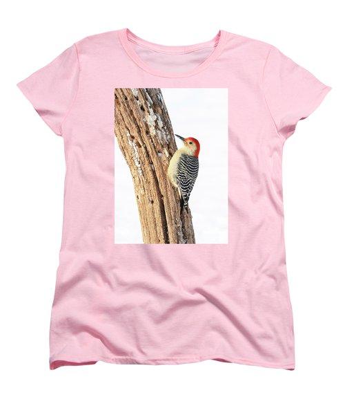 Male Red-bellied Woodpecker Women's T-Shirt (Standard Cut)