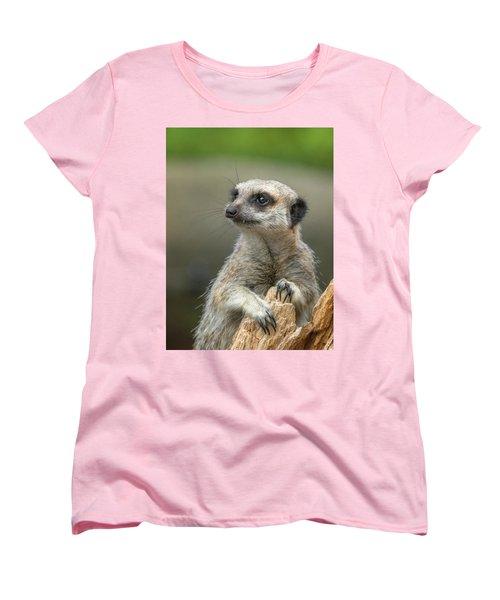 Meerkat Model Women's T-Shirt (Standard Cut) by Racheal  Christian