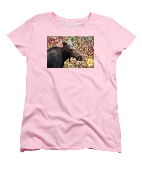 Women's T-Shirt (Standard Cut) featuring the photograph Moose And Fall Leaves by Peggy Collins