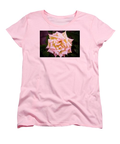 Peace Rose Women's T-Shirt (Standard Cut) by Donna G Smith