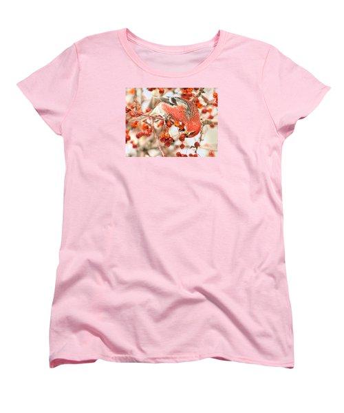 Pine Grosbeak Women's T-Shirt (Standard Cut) by Debbie Stahre