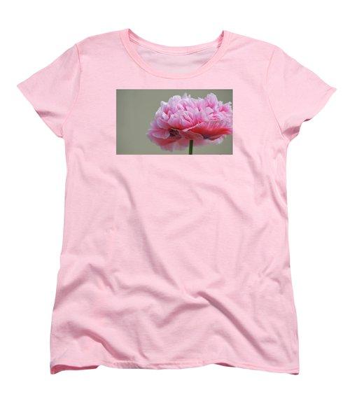 Pink Poppy Women's T-Shirt (Standard Cut)