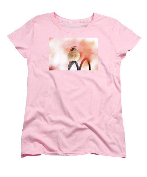 Pretty Cardinal Women's T-Shirt (Standard Cut) by Trina Ansel