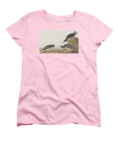 Purple Sandpiper Women's T-Shirt (Standard Cut) by John James Audubon
