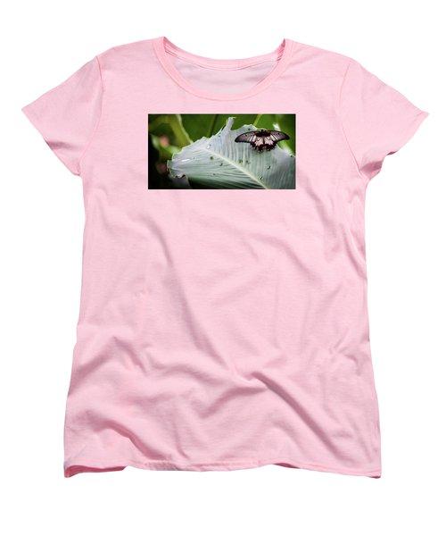 Women's T-Shirt (Standard Cut) featuring the photograph Raining Wings by Karen Wiles