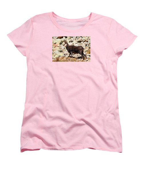 Women's T-Shirt (Standard Cut) featuring the photograph Ready For The Challenge by Richard Patmore