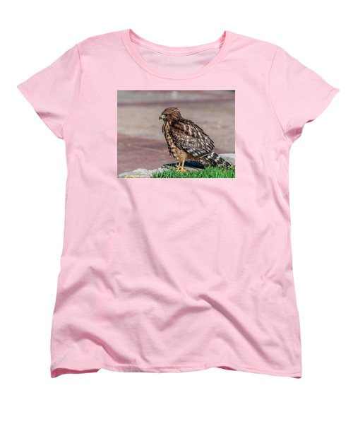 Red-shouldered Hawk Women's T-Shirt (Standard Cut) by Martina Thompson