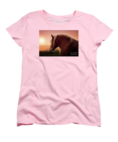The End Of A Long Day At The Ranch Women's T-Shirt (Standard Cut) by Tamyra Ayles