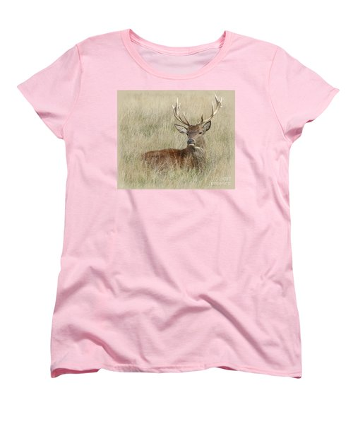 Women's T-Shirt (Standard Cut) featuring the photograph The Gentle Stag by LemonArt Photography