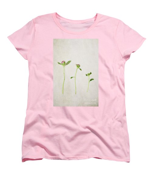 Three Buds Women's T-Shirt (Standard Cut) by Stephanie Frey