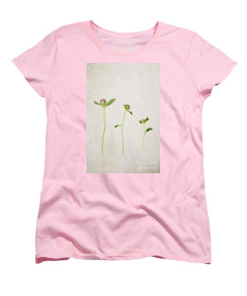 Three Buds Women's T-Shirt (Standard Cut)