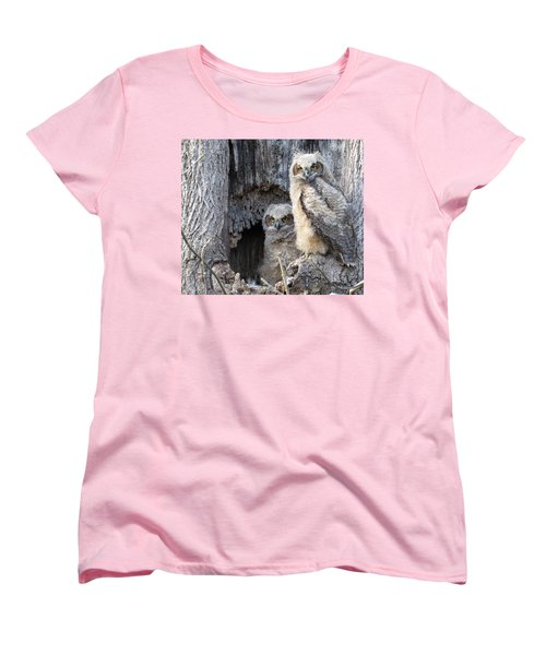 Twin Owls Women's T-Shirt (Standard Cut) by Jeanette Oberholtzer