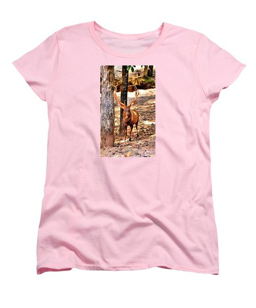 Watchfull Stag Women's T-Shirt (Standard Cut) by James Potts