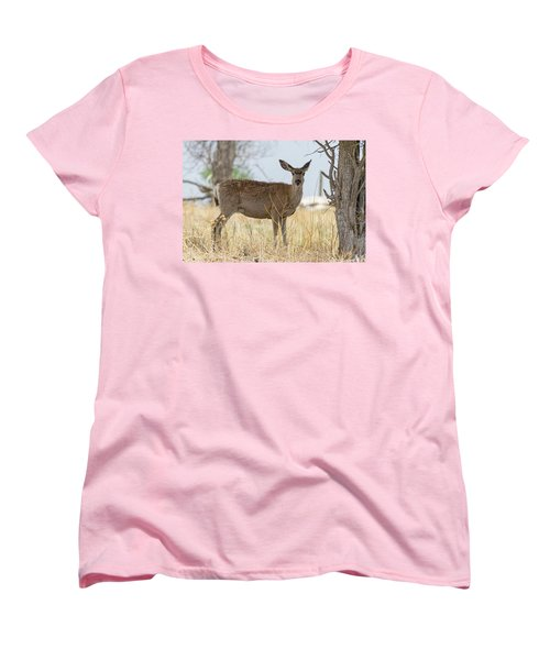 Watching From The Woods Women's T-Shirt (Standard Cut) by James BO Insogna