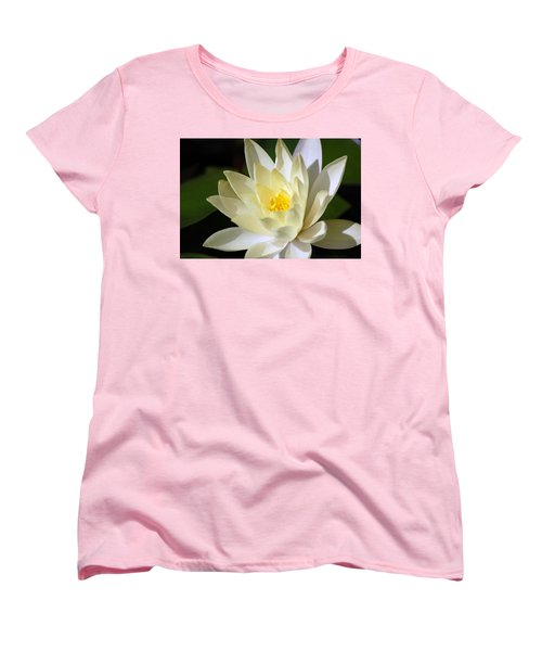 White Water Lily Women's T-Shirt (Standard Cut) by Donna Bentley
