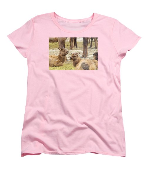 Women's T-Shirt (Standard Cut) featuring the photograph Yearlings by Jeff Swan
