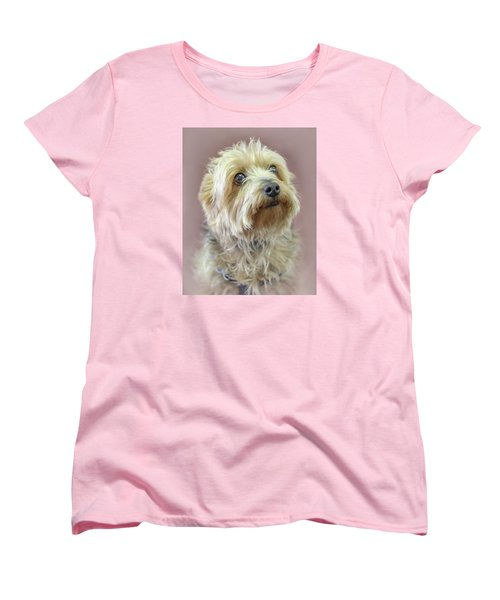 Women's T-Shirt (Standard Cut) featuring the photograph Yorkshire Terrier by Marion Johnson