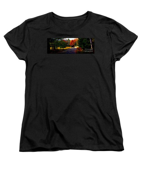 Women's T-Shirt (Standard Cut) featuring the photograph  Acadia National Park Carriage Trail Fall  by Tom Jelen
