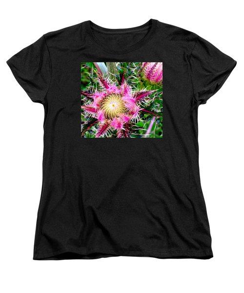 Texas Thistles Women's T-Shirt (Standard Cut) by Antonia Citrino