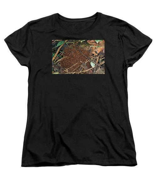 Army Ant Bivouac Site Women's T-Shirt (Standard Cut) by Gregory G. Dimijian, M.D.