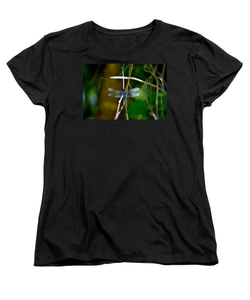 Dragonfly Women's T-Shirt (Standard Cut) by Tara Potts