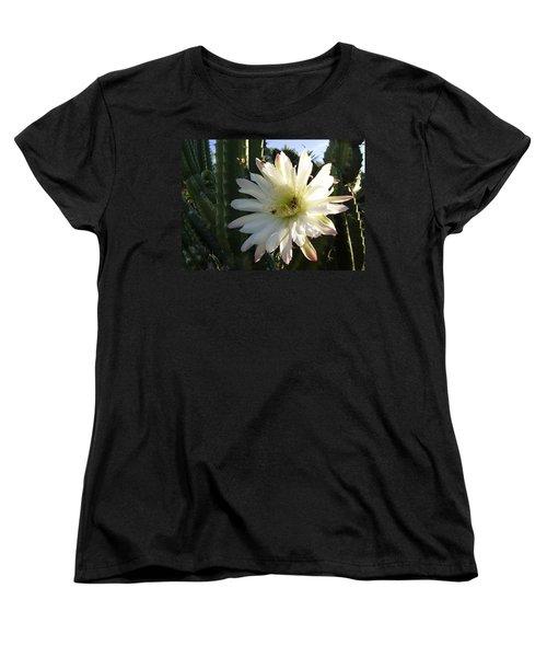 Flowering Cactus 1 Women's T-Shirt (Standard Cut) by Mariusz Kula