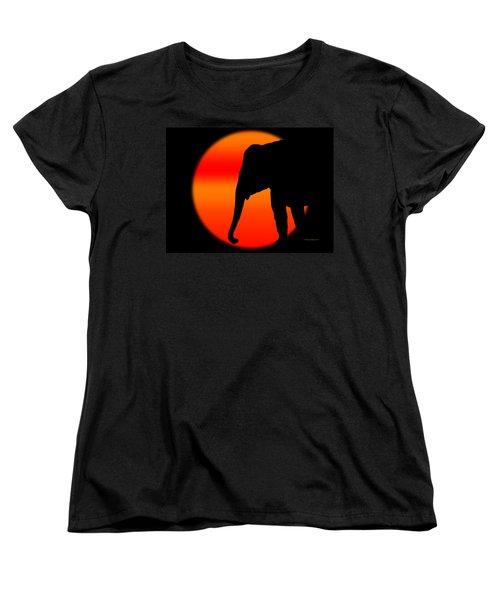 Into The Night Women's T-Shirt (Standard Cut) by Robert Orinski