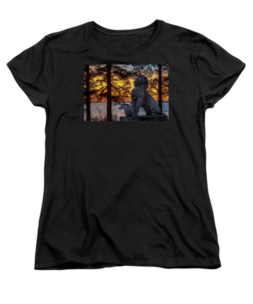 Lion At Sunset Women's T-Shirt (Standard Cut) by Jerry Gammon