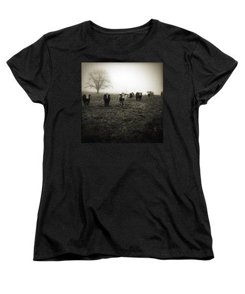 Livestock Women's T-Shirt (Standard Cut) by Les Cunliffe