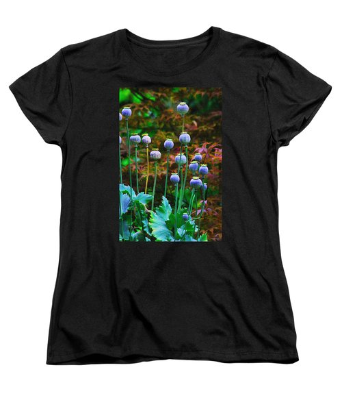 Poppy Seed Pods Women's T-Shirt (Standard Cut) by Tom Janca
