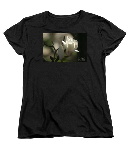 Sun Kissed  Women's T-Shirt (Standard Cut) by Living Color Photography Lorraine Lynch