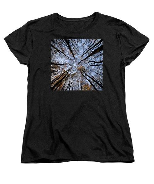 Tall Trees Women's T-Shirt (Standard Cut) by Mike Santis