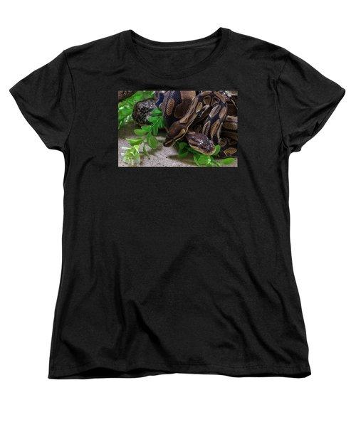 Two Burmese Pythons Python Bivittatus Women's T-Shirt (Standard Cut)