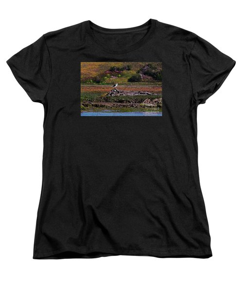 Western Gulls Nesting In A Log Women's T-Shirt (Standard Cut) by Susan Wiedmann