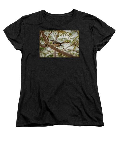 Mockingbird Women's T-Shirt (Standard Cut) by Robert Bales
