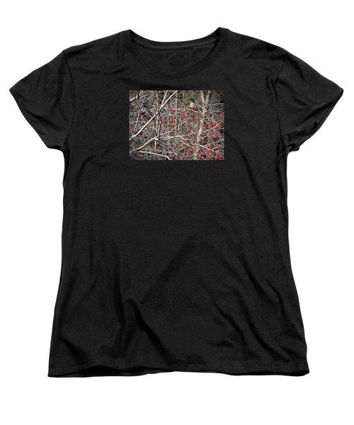 Women's T-Shirt (Standard Cut) featuring the photograph Robin by Joy Nichols