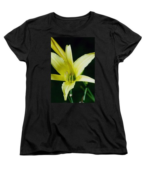 Women's T-Shirt (Standard Cut) featuring the photograph 3d Yellow Daylily by Belinda Lee