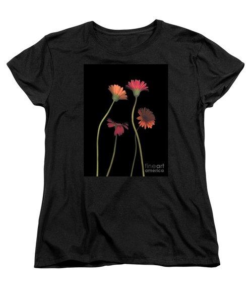 4daisies On Stems Women's T-Shirt (Standard Cut) by Heather Kirk
