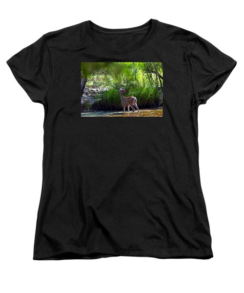 Women's T-Shirt (Standard Cut) featuring the photograph A Buck Feeding by Brian Williamson