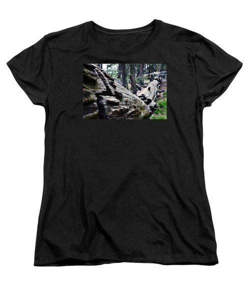 Women's T-Shirt (Standard Cut) featuring the photograph A Fallen Giant Sequoia by Kyle Hanson