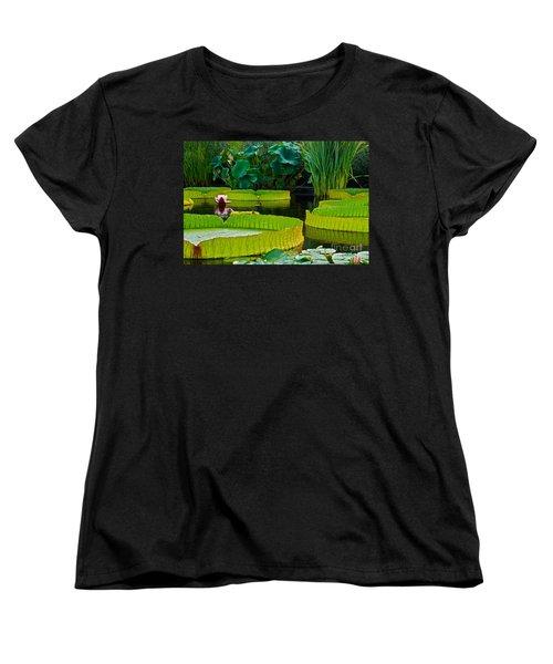 A Garden In Gentle Waters Women's T-Shirt (Standard Cut) by Byron Varvarigos