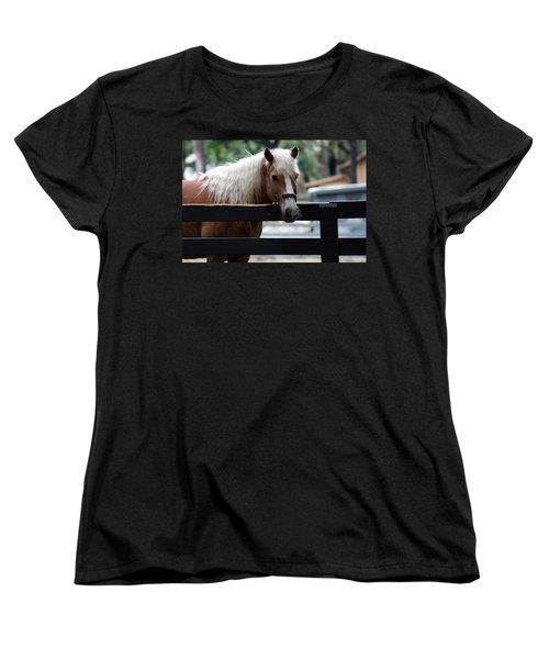 A Hilton Head Island Horse Women's T-Shirt (Standard Cut) by Kim Pate