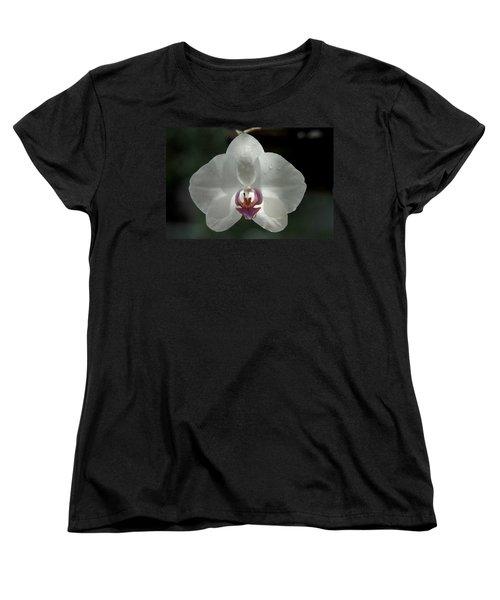 Women's T-Shirt (Standard Cut) featuring the photograph A Light Rain by Greg Allore