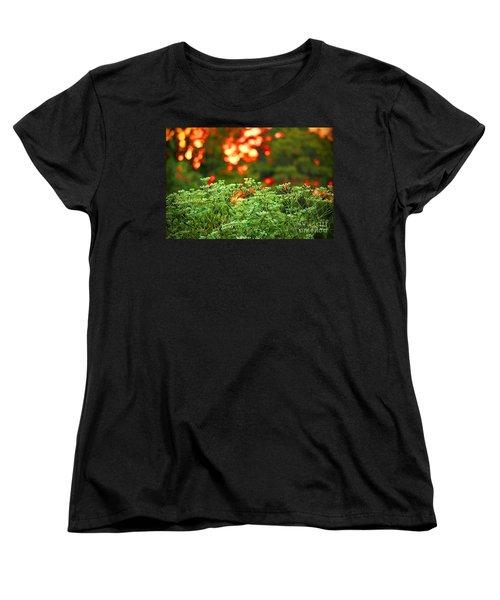 A Love Bug Sunset Women's T-Shirt (Standard Cut) by Kim Pate