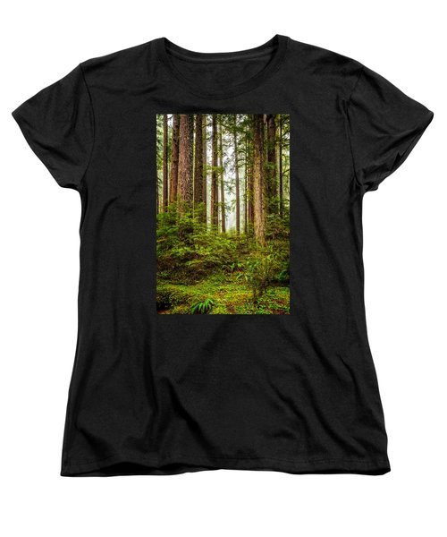 A Walk Inthe Forest Women's T-Shirt (Standard Cut) by Ken Stanback