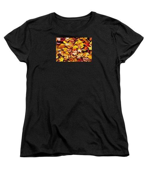 After The Fall Women's T-Shirt (Standard Cut) by Daniel Thompson