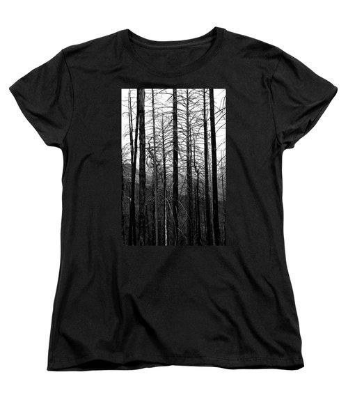 After The Fire Women's T-Shirt (Standard Cut) by Joe Kozlowski
