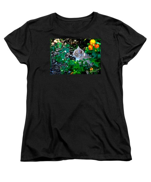 Women's T-Shirt (Standard Cut) featuring the photograph Afternoon Nap Interrupted by Susan Wiedmann