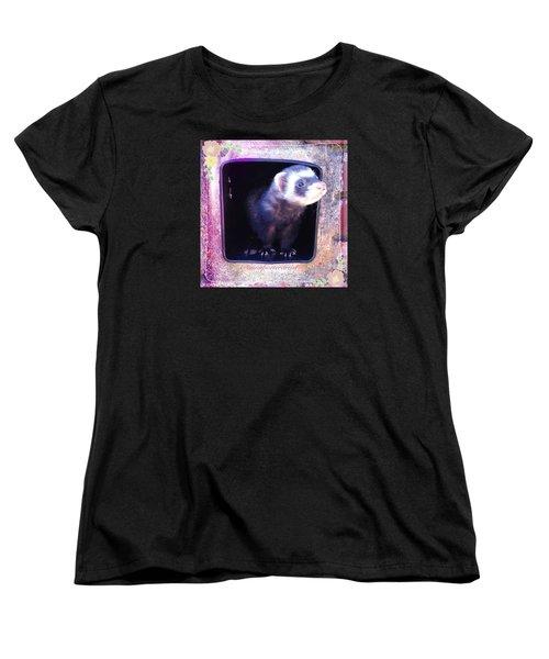 Airmail Ferret Women's T-Shirt (Standard Cut) by Anna Porter